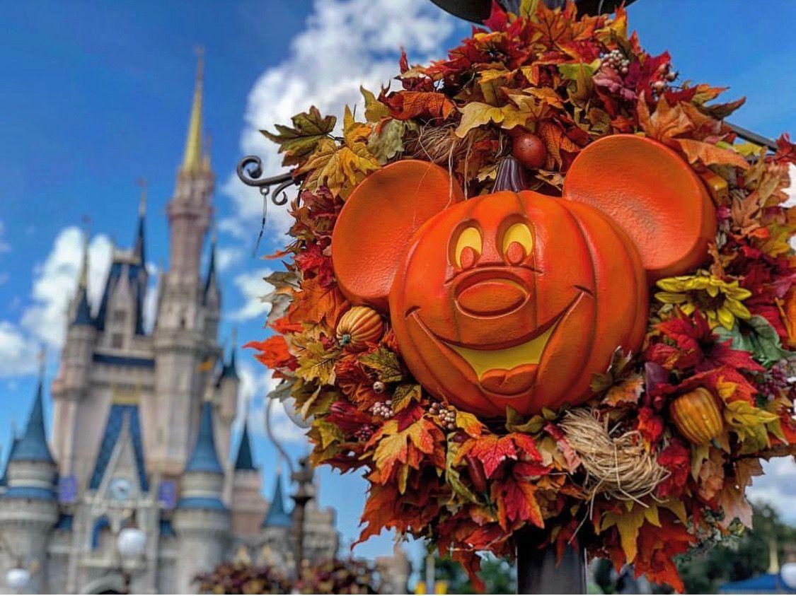 Pin by Bill Glaser on Halloween Fall wreath, Halloween