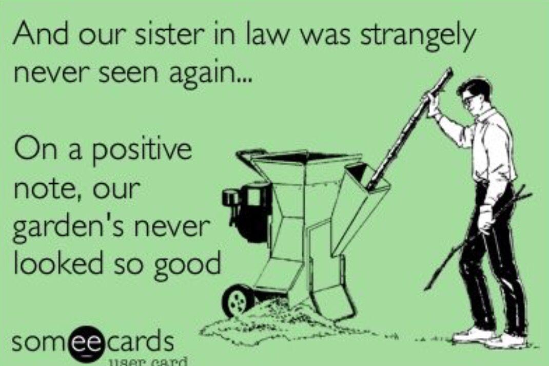 Sister in law Sister in law meme, Sisters funny, Sister