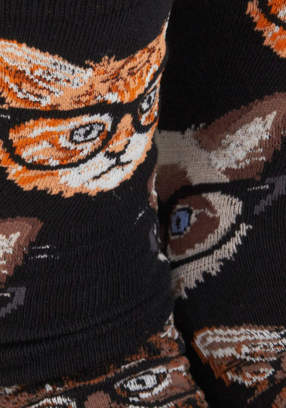 One Wise Kitty Socks - Black, Brown, Print with Animals, Novelty Print, Casual, Quirky