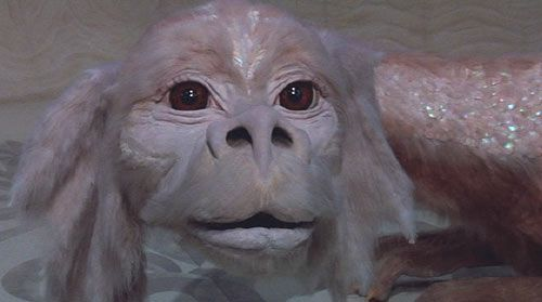 What Was The Flying Dog S Name In Neverending Story