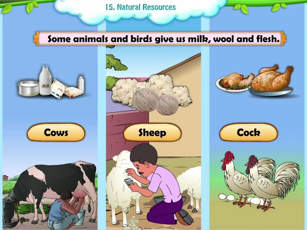 Manmade v natural resources video could be used as a