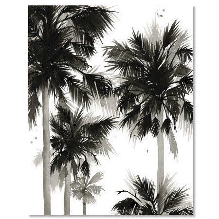 Black And White Palm Tree Iv Watercolor Print Black And White