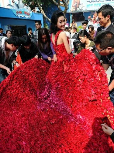 Amazing isn't it!  I would love to experince this Phenominal event .  I wonder how long it took and how many hands, and wow, even how many roses she wore.  Blushing Beauty!