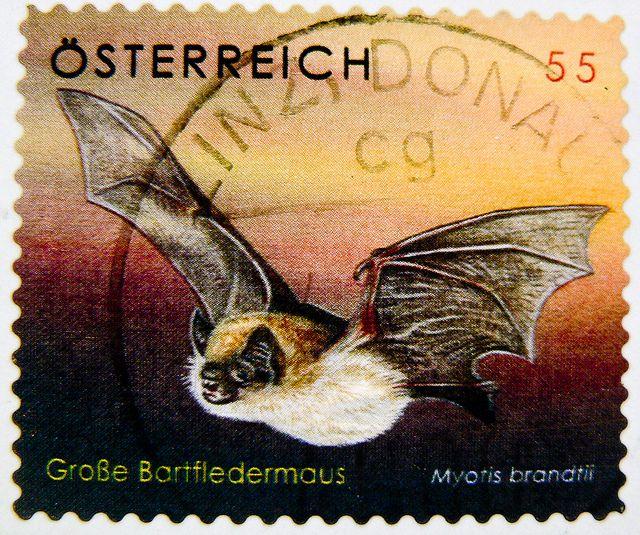 Bat Stamp Austria