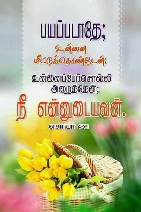 Jesus Wallpaper Bible Verse Scriptures Quotes Tamil Words Promises Church Stage Design