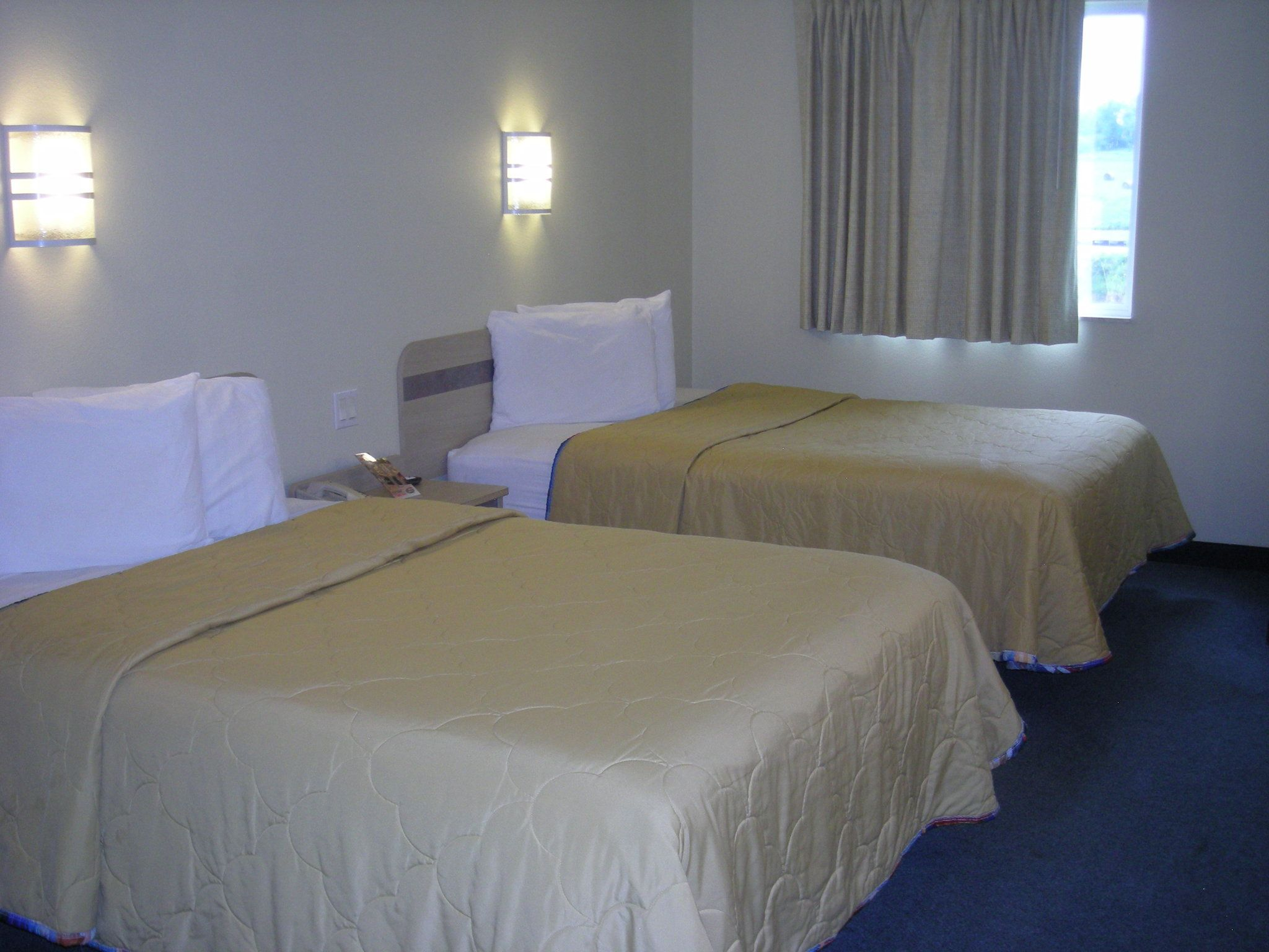 Cheap Pet Friendly Hotels In Georgetown In Red Roof Inn Red Roof Home Decor