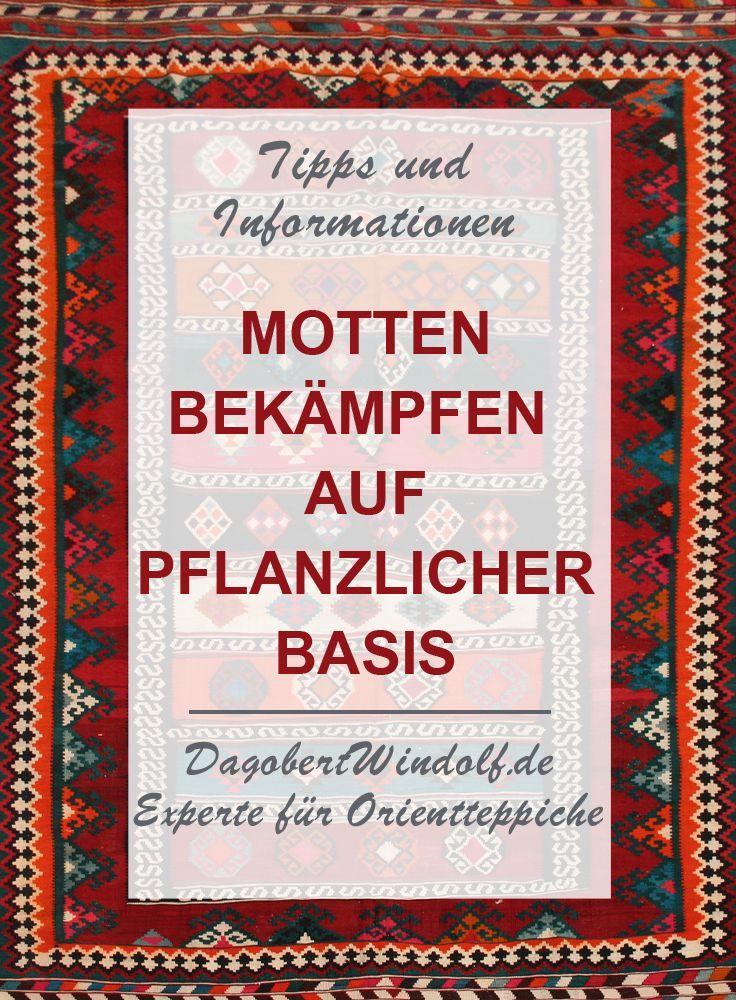 Motten Bekampfen Pflanzlicher Mottenschutz Motten Im Teppich Teppich Haushalts Tipps