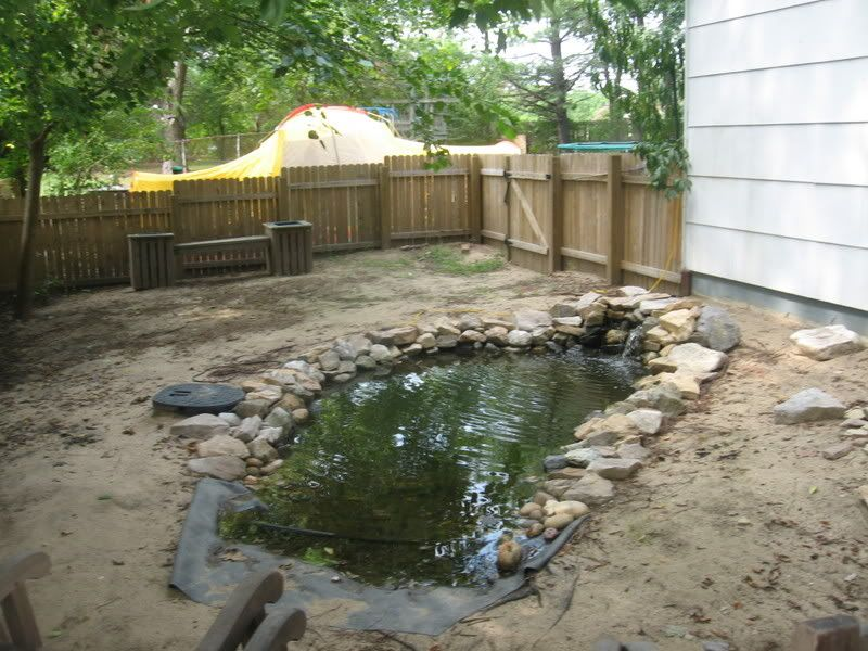 Outdoor habitat for mud turtles my new outdoor habitat for Backyard pond animals