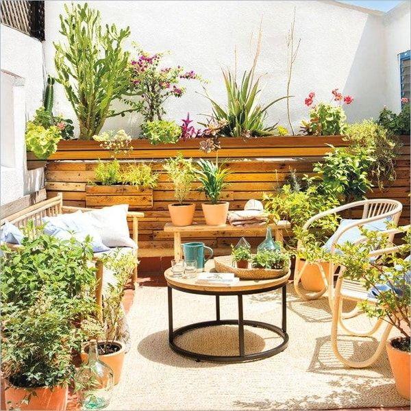 Plantas Para Terrazas Claves Para Escoger Las Mas Adecuadas Decoracion De Terrazas Pequenas Decoracion Terraza Decorar Terrazas Pequenas