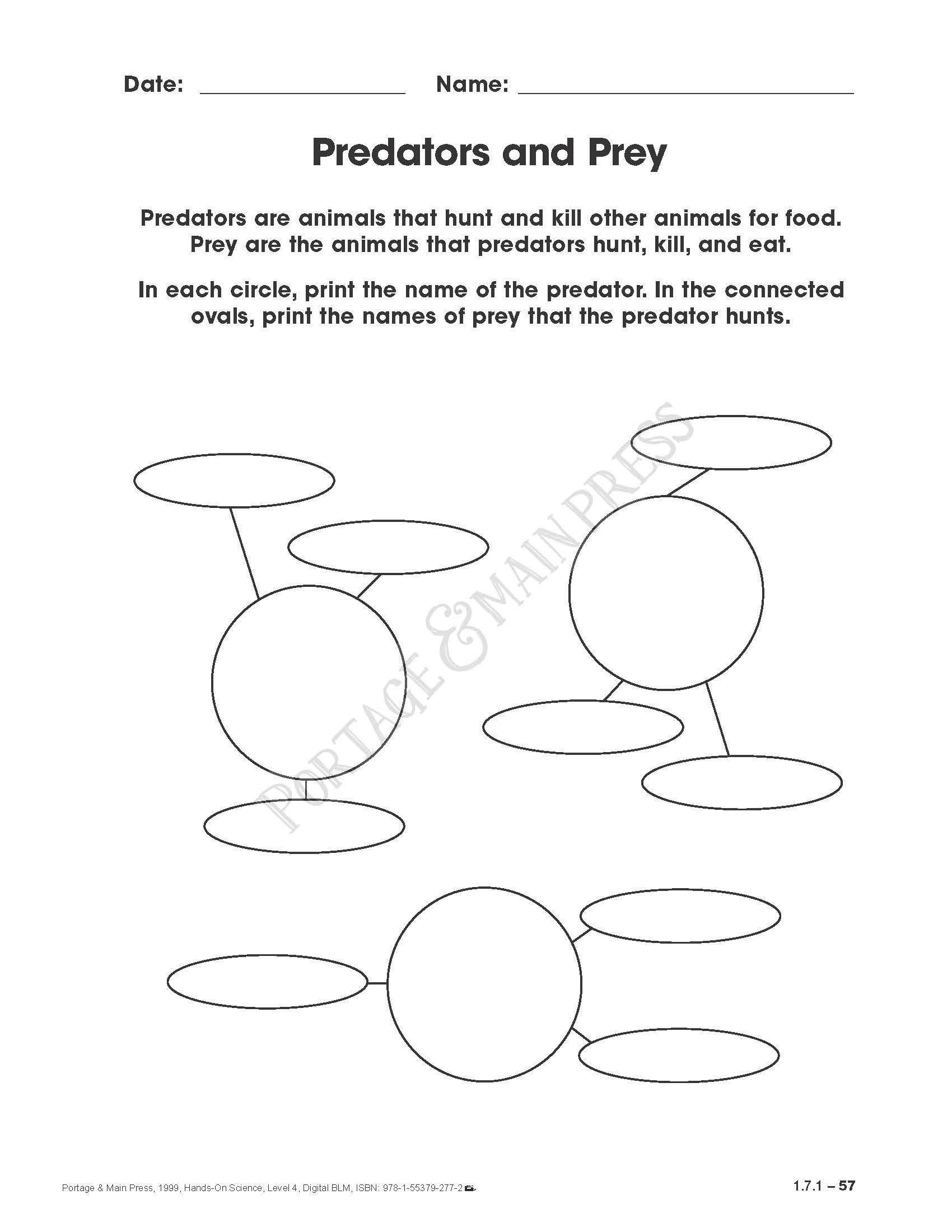 Predator Prey Graph Worksheet Grade 4 Science Predators And Prey Activity Sheet Science Skills Fun Science Kids Worksheets Printables