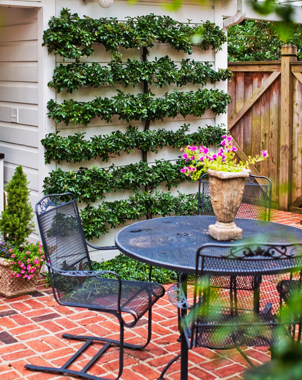 24 Budget-Friendly Backyard Ideas to Create the Ultimate ...