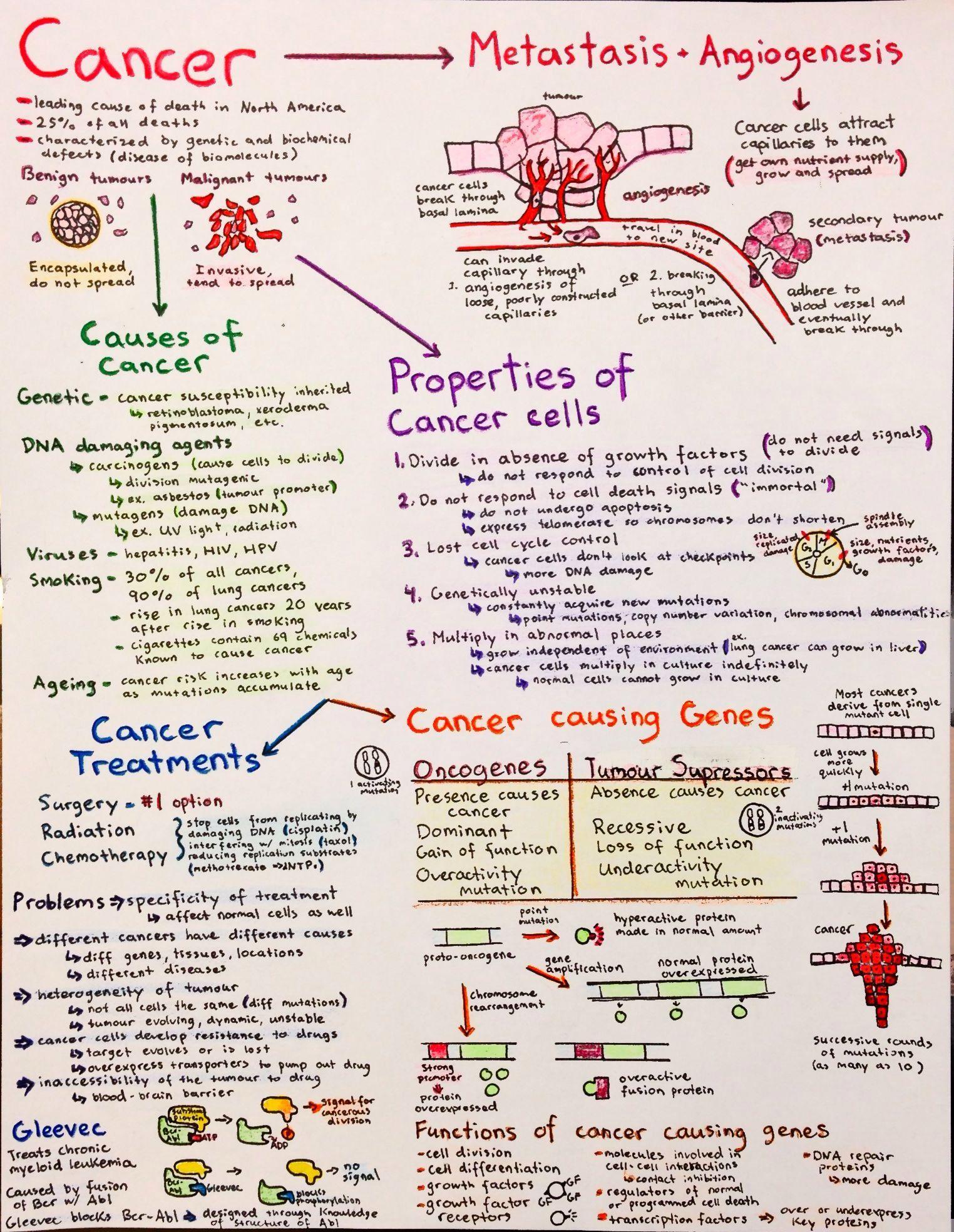 Should I major in Biology or Chemistry? | Student Doctor ...