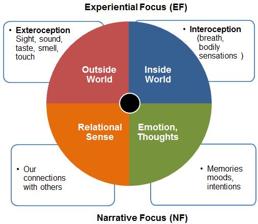 Wheel Of Awareness Png 507 440 Managing Emotions Dan Siegel Child Therapy
