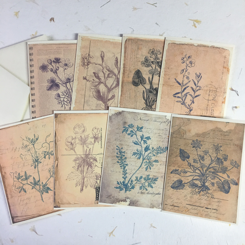 Antique Botanical Writing Paper Set Of 8 4 X 6 Inches Etsy Vintage Botanical Prints Botanical Prints Journal Cards