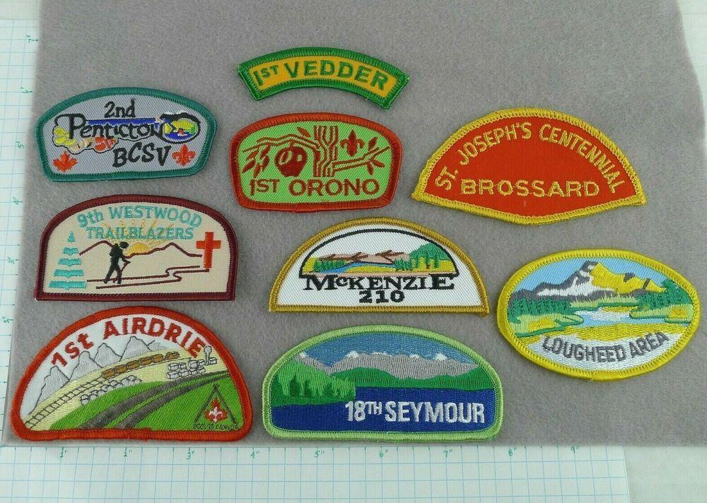 Lot of 9 boy scout shoulder badges and district crests