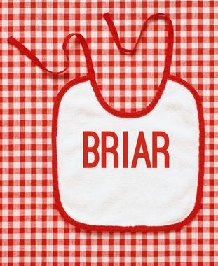 briar 2018 baby girl name | Indian baby girl names, Irish ...