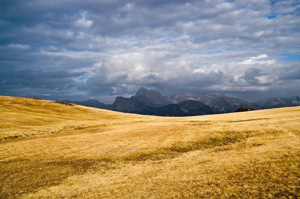 Alpe di Siusi - Seiser Alm / South Tyrol / Italy   by designladen.com