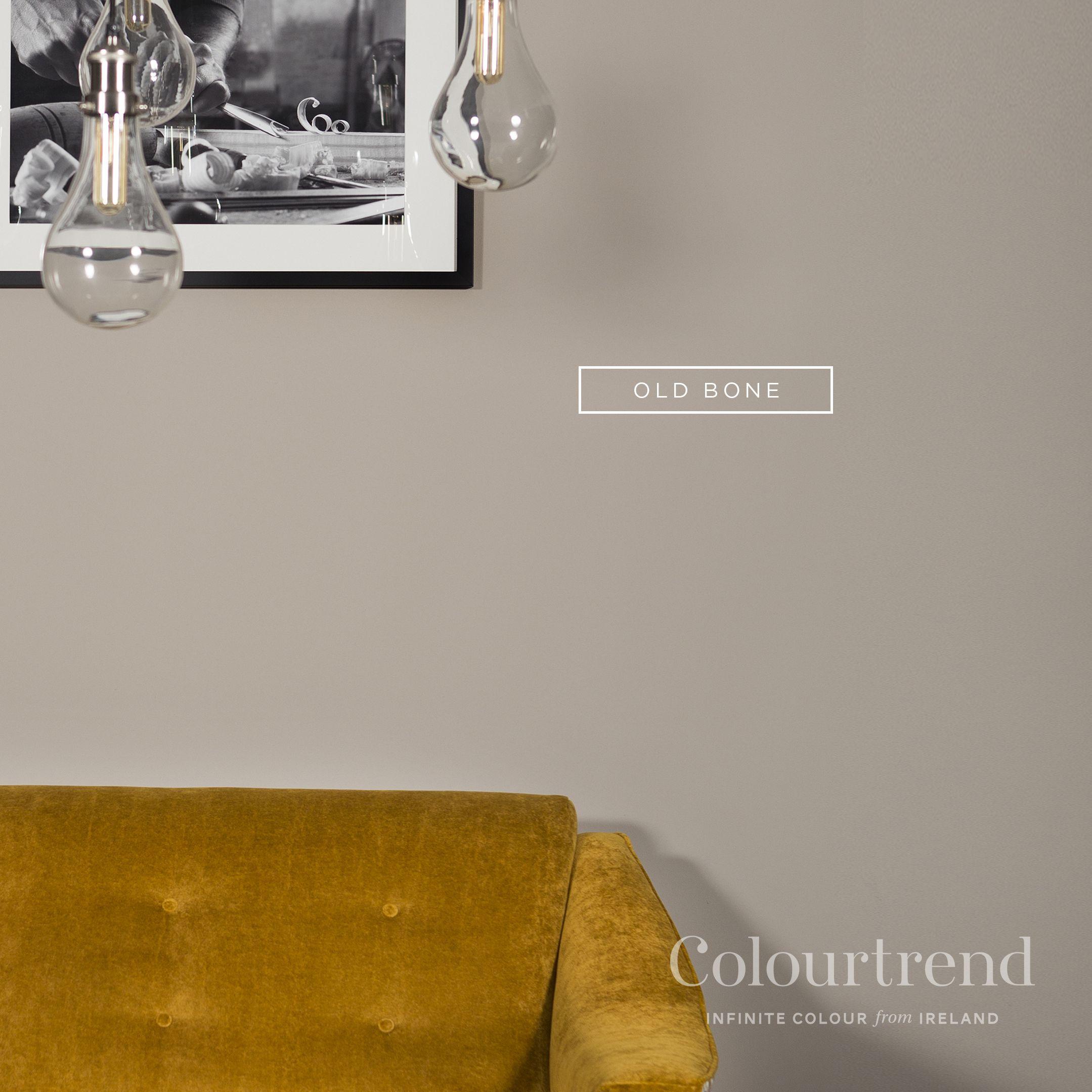 Paints And Paint Mixing Bristol Paint Color Inspiration Colourtrend Paint Color Trends