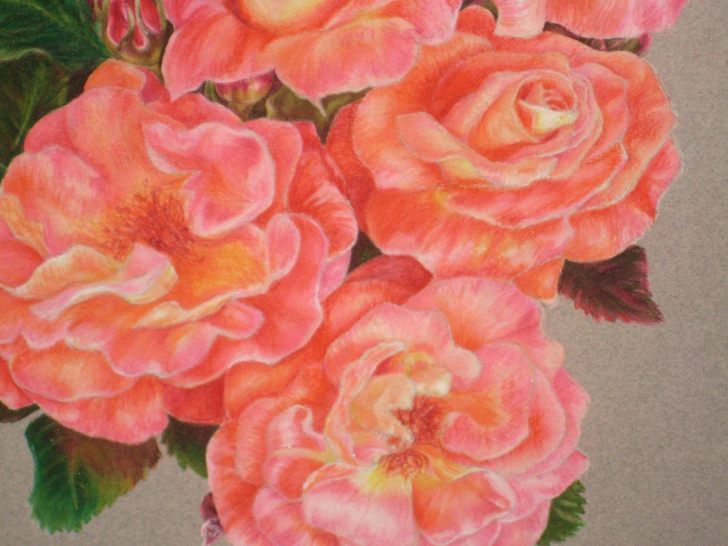 colored pencil drawings of flowers   sketching with colored pencils ...