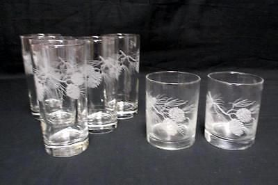 Set Of 7 Matching Pine Cone Tree Branch Etched Tumblers Drinking Glasses Pine Cone Tree Tree Branches Pine Cones