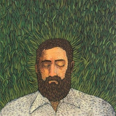 Iron And Wine- Our Endless Numbered Days