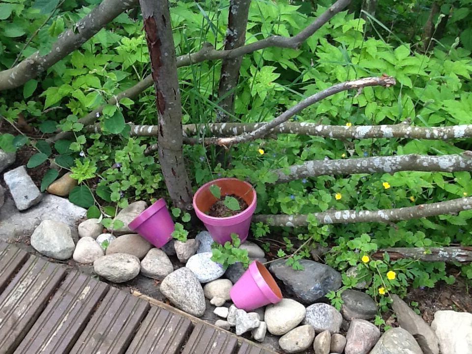 Kiviä ja vaaleanpunaisia ruukkuja