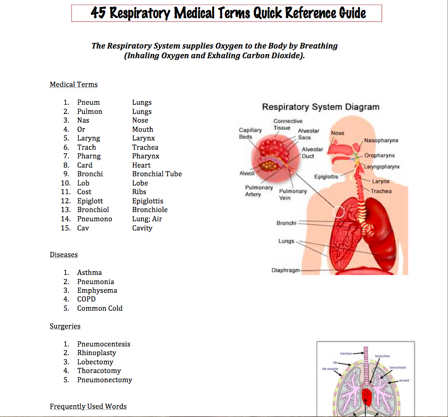 45 Respiratory Medical Terms Quick Reference Guide is perfect for