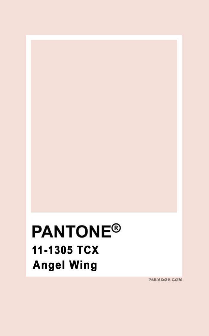 Pantone Angel Wing 11-1305