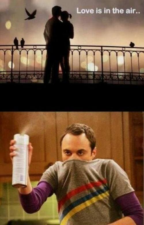 Love Is In The Air Sheldon Has The Same Views As Me It Seems