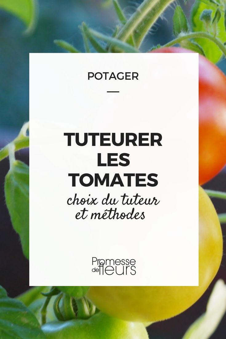 tuteurer les tomates conseils et astuces jardins potager potager tomates et jardins. Black Bedroom Furniture Sets. Home Design Ideas