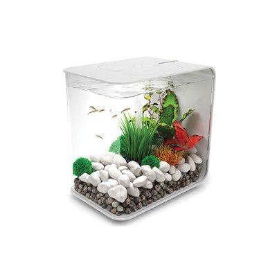 Biorb Flow Aquarium Tank Size 30 H X 30 W X 30 D Color White Betta Fish Tank Aquarium Fish Tank