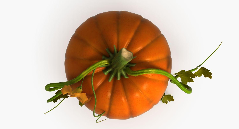 3d Model Pumpkin Vegetable Fruit Food Autumn Citrouille