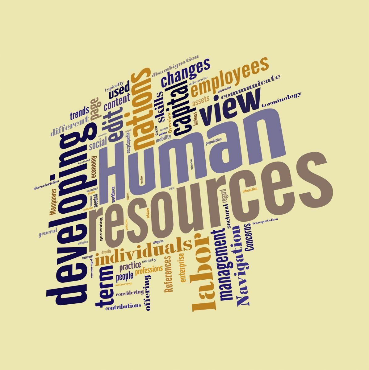 Capitale umano determinante per la ripresa economica, lo