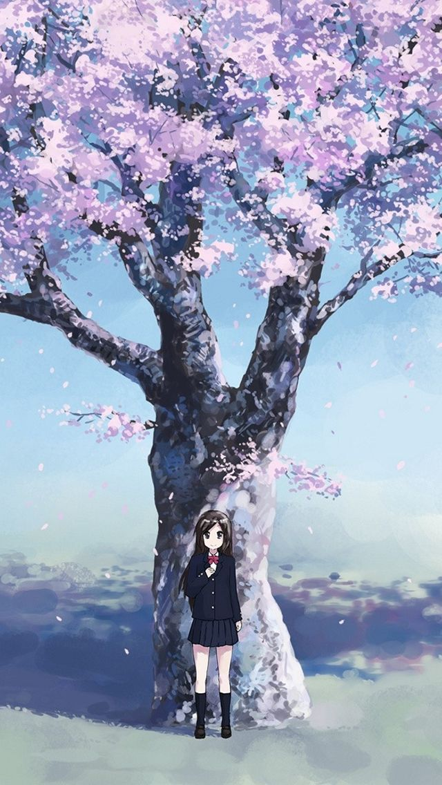 Cherry Blossom Iphone 5s Wallpaper Cherry Blossom Wallpaper Iphone Anime Cherry Blossom Cherry Blossom Wallpaper