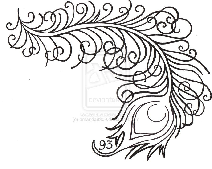 Line Drawing Peacock : Peacock line drawing google search pretty peacocks