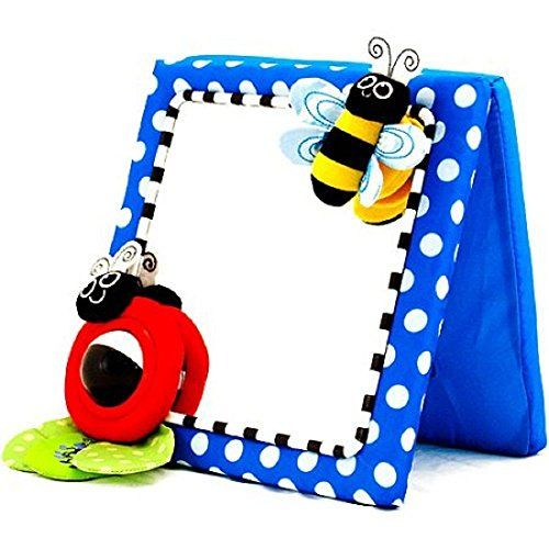 Sassy Developmental Crib And Floor Mirror Red Discontinued By Manufacturer Additional Details Baby Mirror Sassy Baby Baby Toddler Toys