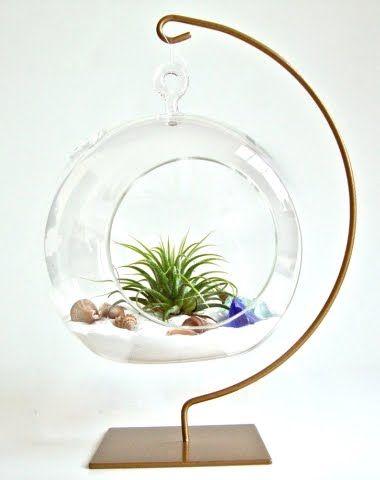 Hanging Glass Globe Terrarium Ideas With A Coastal Beach Theme Diy