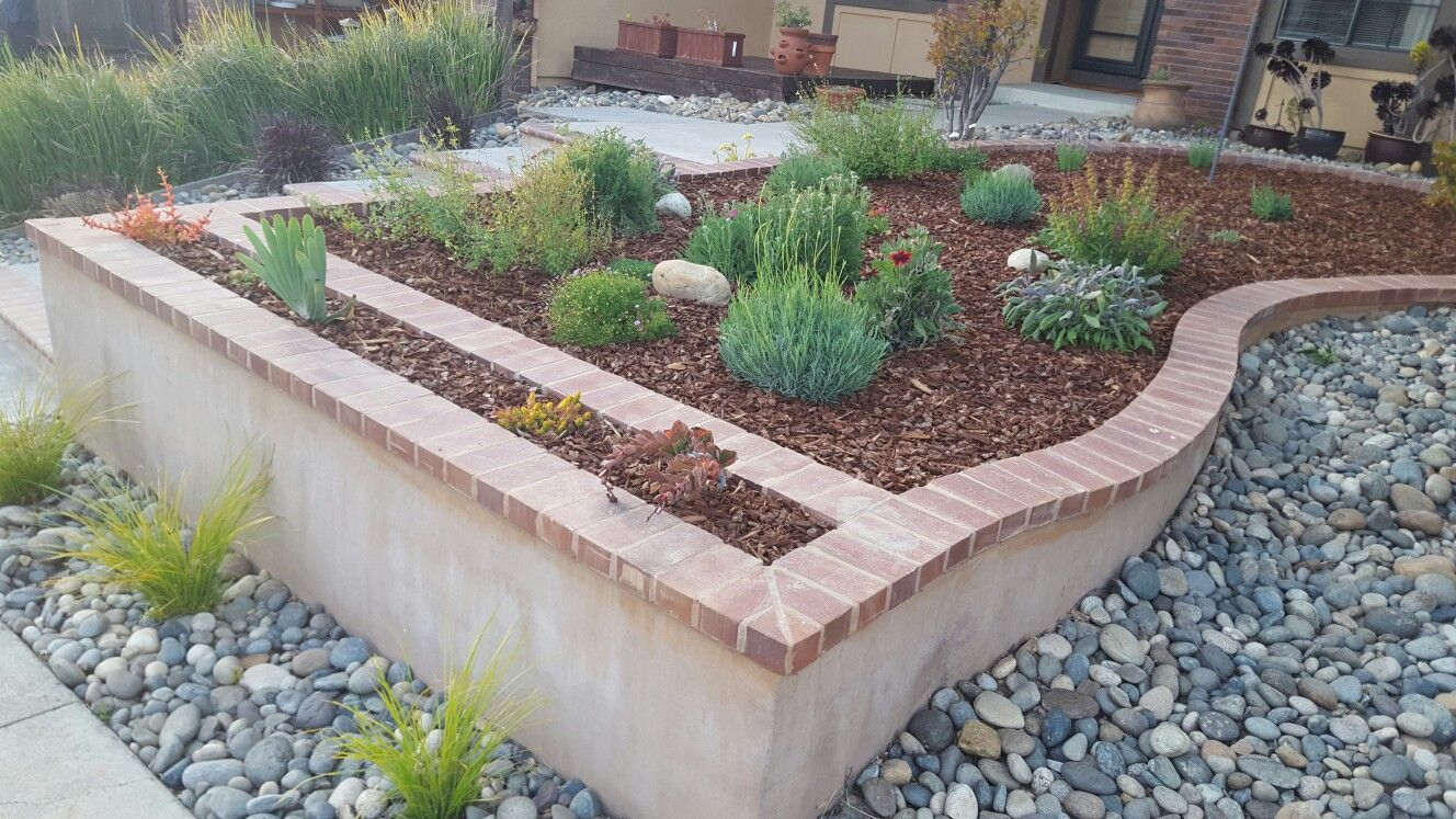 Succulent Garden With Bark Cement Retaining Wall With 2 Colors