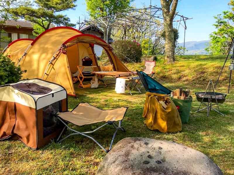 大分県カナディアンビレッジ おしゃれなロッジのあるキャンプ場にペット同伴で行ってきました キャンプ場 キャンプ ロッジ
