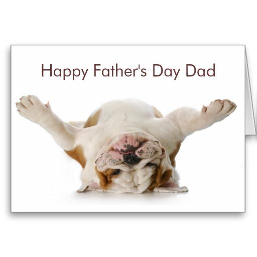 Check out my Zazzle $50 Fathers Day Giveaway >http://bit.ly/1SxtVLg