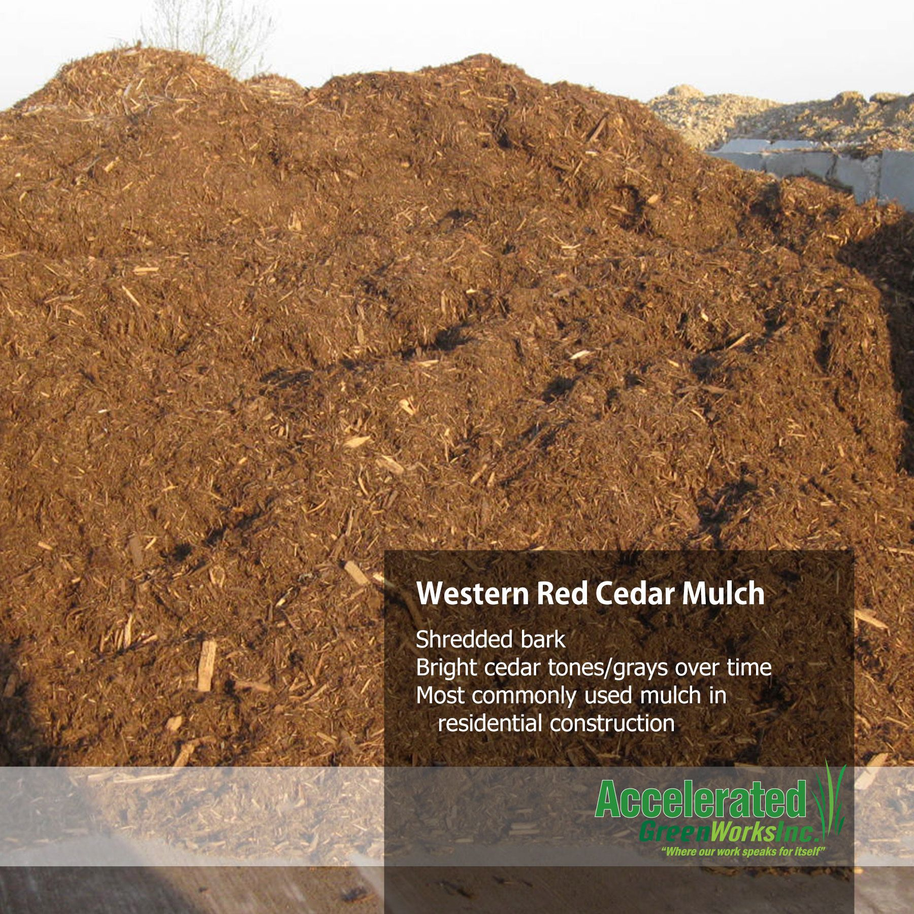 Western Red Cedar Mulch Landscaping With Rocks