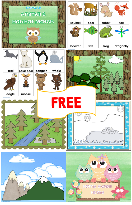 Animal Habitat Worksheets : Animal and habitat match free printables habitats