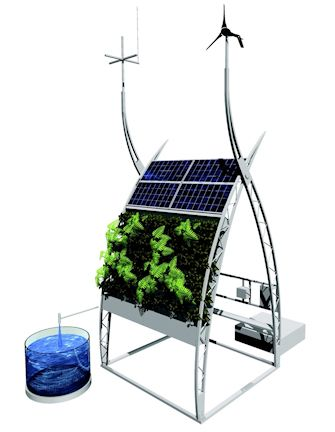 OMG...fish, plants, solar and wind all in one glorious contraption. LOVE!