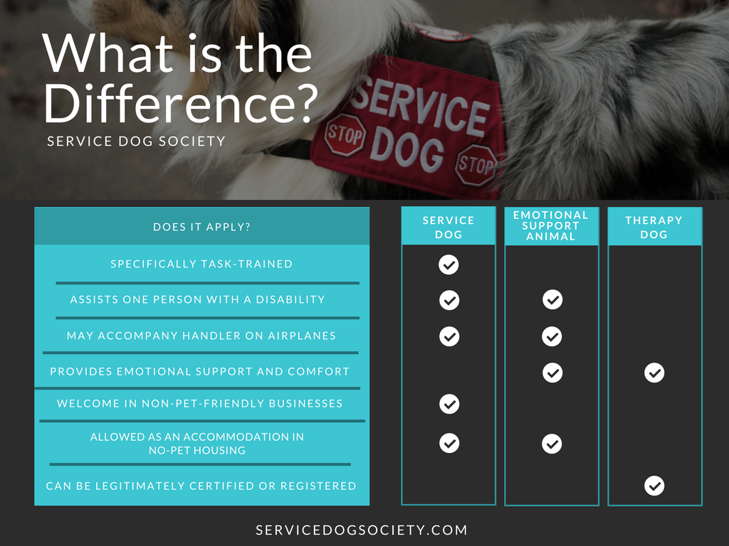 Service dog sd vs emotional support animal esa vs therapy dog service dog sd vs emotional support animal esa vs therapy dog 1betcityfo Gallery