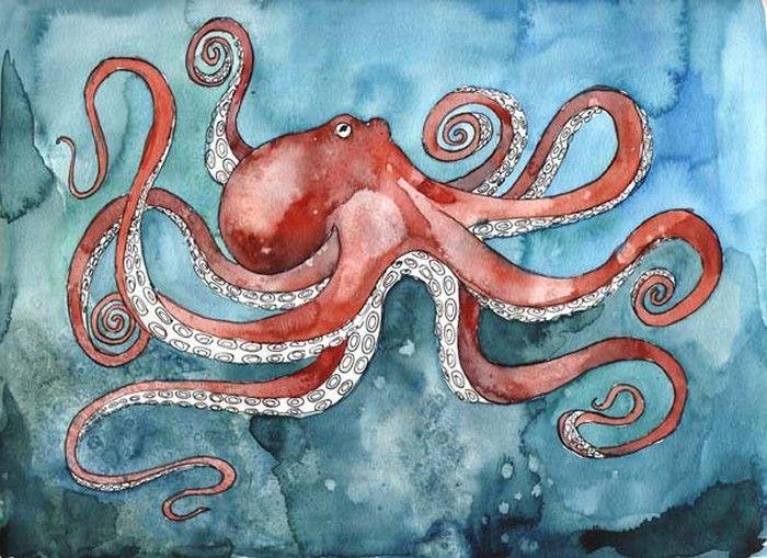осьминожка | Морские принты, Рисунки, Картинки