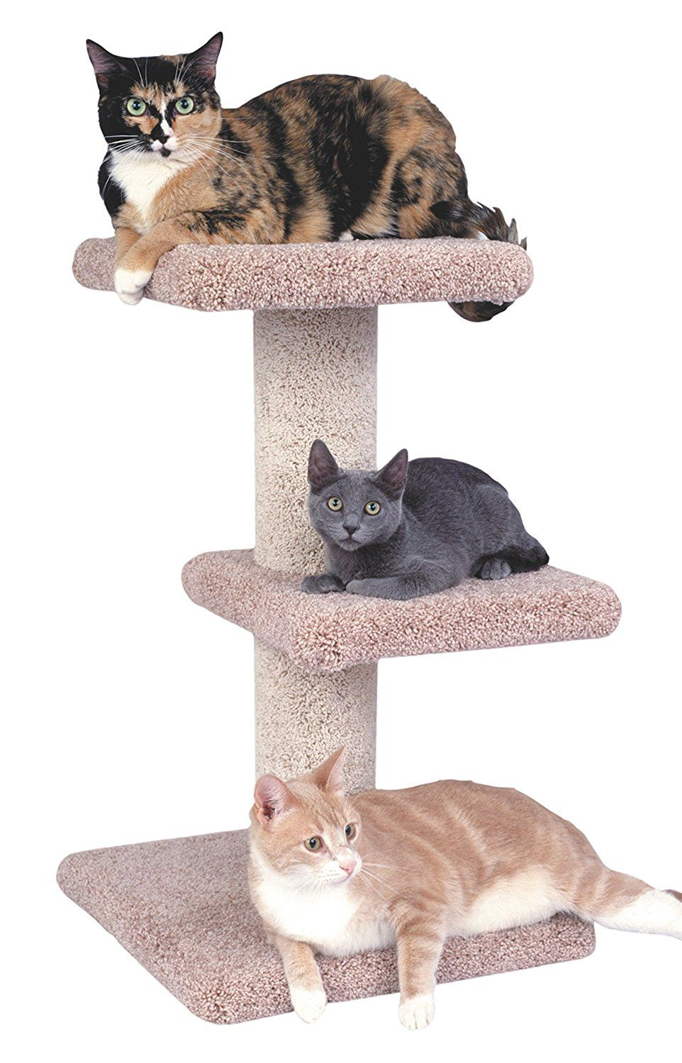 Claw Tuff 2 Story Cat Tower Additional Info Cat Tree Cats Cat Tower Great Cat