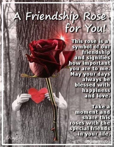 A Friendship Rose For You This Rose Is A Symbol Of Our Friendship