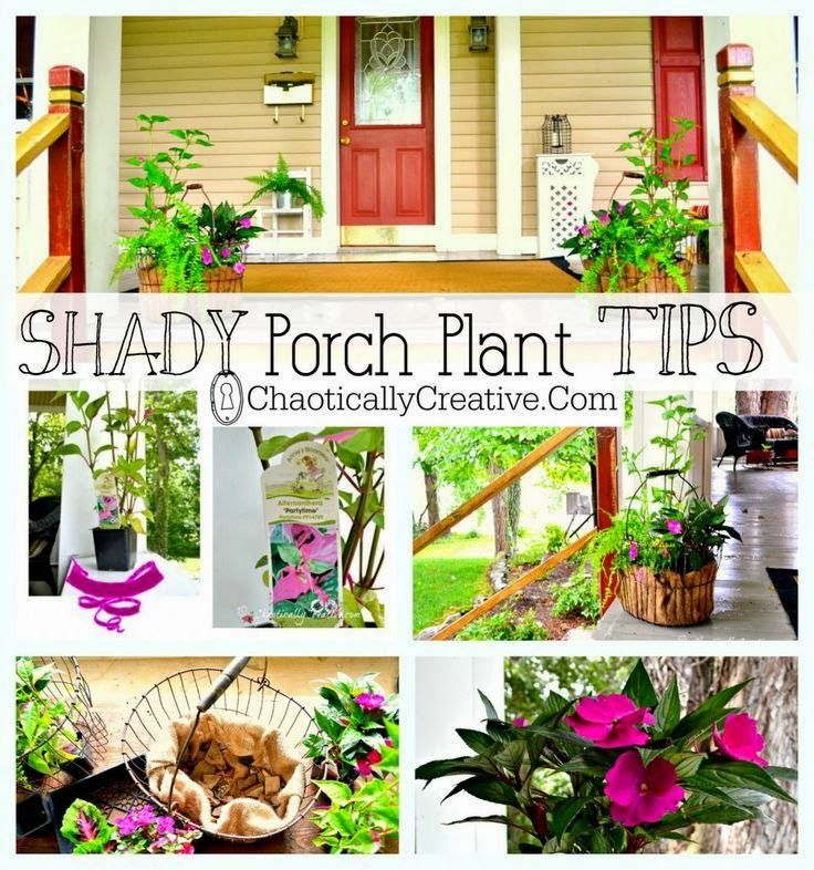 Backyard Ideas For Spring Decorating 6 Tips To Make: Shady Porch Plants... Tips On How To Pick The Best Plants