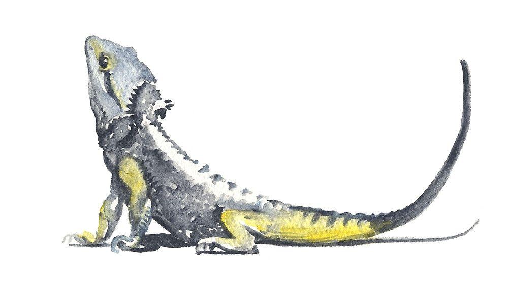 Eastern Bearded Dragon » par Denise Faulkner | animaux | Pinterest ...