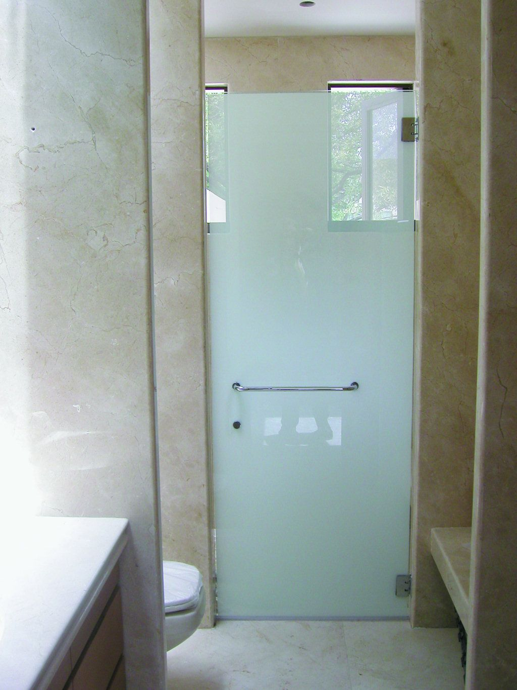 Frameless Frosted Shower Doors | Shower Doors, Mirrored Closet ...